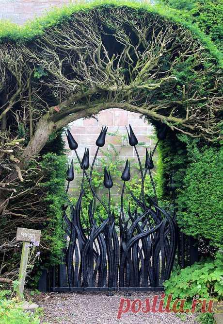 Очаровательная калитка для вашего сада