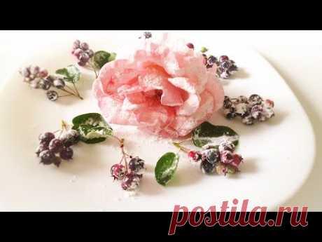 La lección 11 adornamientos Confitados para la torta de las flores vivas y las bayas frescas