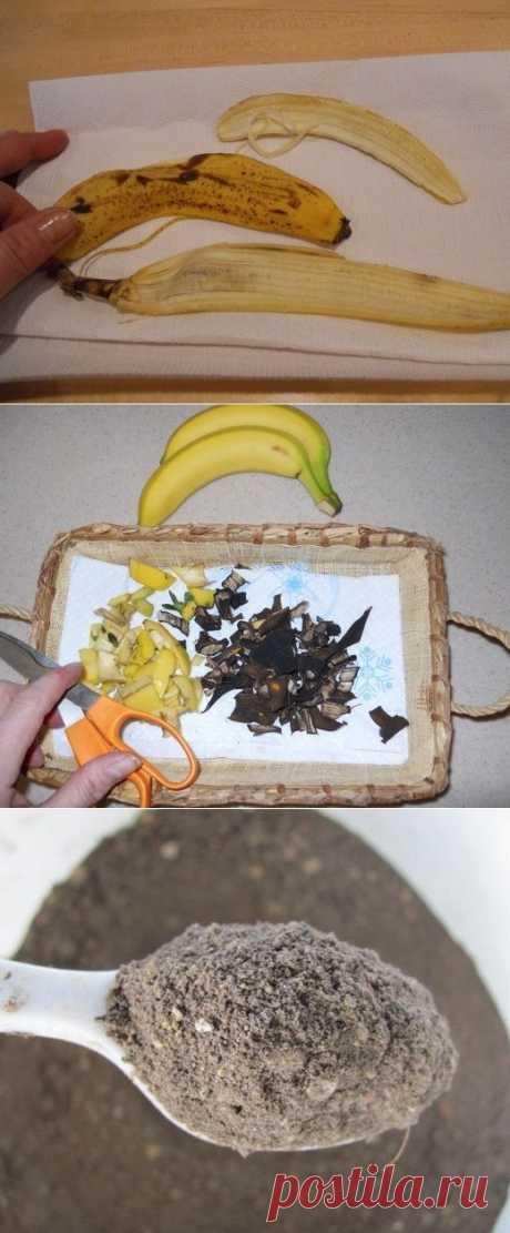 ¡Ayuden sus colores crecer! - secado Banana Peel de los abonos