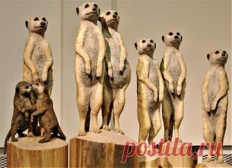 Скульптурная группа Сурикаты - земляные человечки состоит из 5 частей, 8 фигур. Размеры в натуральную величину. Находится в коллекции автора. Выставлена на продажу. Цена 400000 руб.