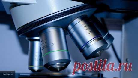 Роспотребнадзор оценил влияние мутаций на коронавирус в Сибири Российские специалисты зафиксировали изменения коронавируса в Сибирском регионе. Такое заявление сделали в Роспотребнадзоре 17 ноября.