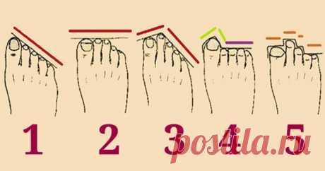 Как определить характер человека по форме пальцев на ногах