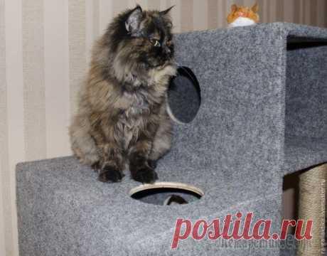 Домик для кошки за несколько дней Для начала предлагаем взглянуть на чертежи домика и составляющие. Как видно на фото, автор данного творения использовал обычные вещи, которые легко можно купить в магазинах. Итак, приступаем. Для того...