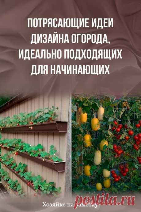 Потрясающие идеи дизайна огорода, идеально подходящих для начинающих