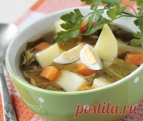 Щавелевый суп с перепелиными яйцами - Портал «Домашний»