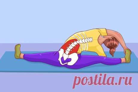 10 упражнений на растяжку, которые помогут расслабить спину после трудного рабочего дня  1. Растяжка для спины и шеи Это упражнение предназначено для проработки мышц, поддерживающих позвоночник и обеспечивающих ему гибкость и покой. Наклоны вперед, в сторону и назад помогают «вылечить» сколиоз и убрать боли в спине, вызванные его искривлением. Выполнять их нужно аккуратно, без рывков и резких движений. Встаньте прямо, ноги можно расставить немного пошире или держать полусогнутыми — так даже лу…