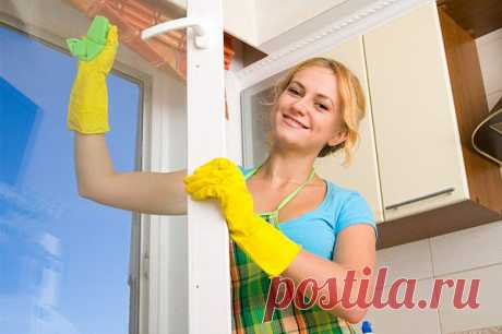 7 советов по мытью стекол домашними экологическими средствами. Долой химию!.