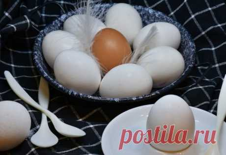 Куриные яйца при диабете: как часто их есть и зачем? | Рецепты от шеф-поваров👨🍳 | Яндекс Дзен