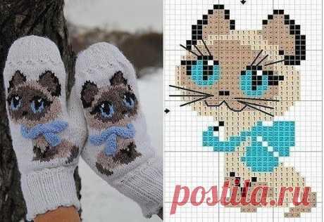 Любимый котенок Гав, вяжем, вышиваем)