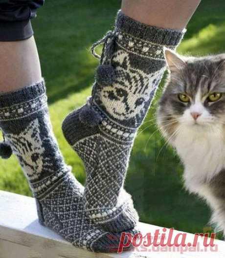 Вязаные носки «Кошечки».