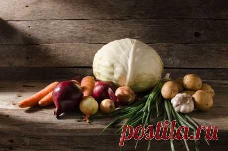 33 совета, как сохранить свой урожай до Нового года | 6 соток