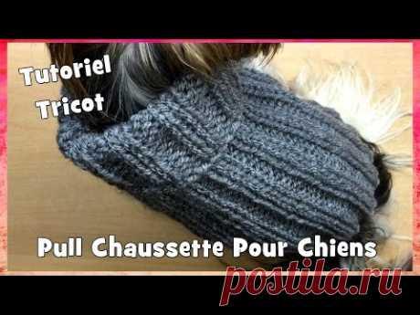 Tutoriel Tricot: Pull Chaussette pour petits chiens Chihuahuas ou Yorkshires