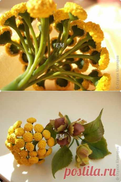 Веточка пижмы или МК для новичков по серединкам цветов. Лепка. Холодный фарфор.