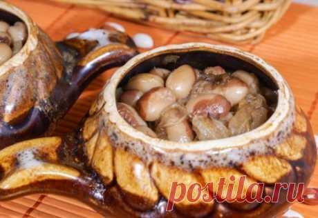 Блюда из фасоли – легко, вкусно и полезно / Простые рецепты