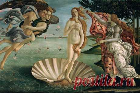 Венера Боттичелли чуть не убила пожилого итальянца - Здоровье Mail.Ru