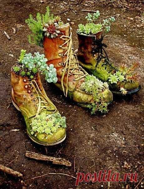 не выбрасывайте старую или дырявую обувь, она может пригодиться