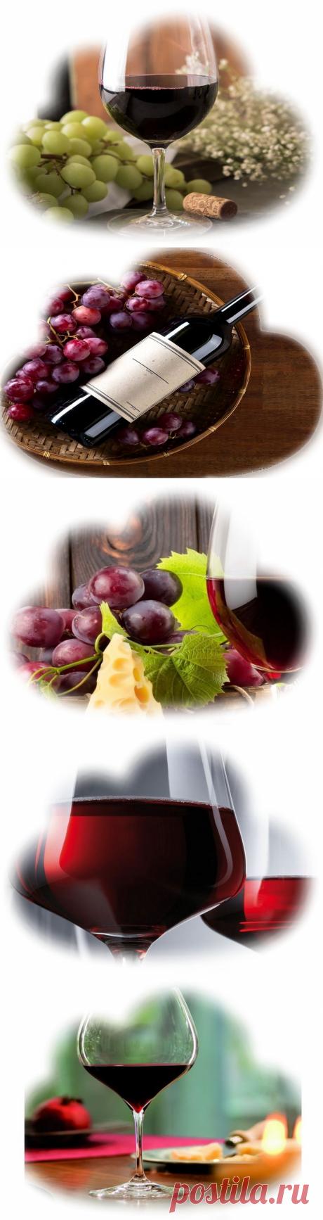 Что значит сон, в котором приснилось красное вино Сонник – К чему снится красное вино?