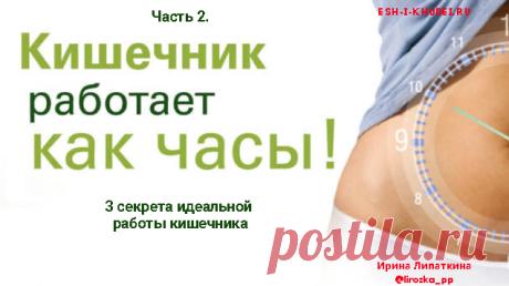 Как наладить работу кишечника  Как наладить работу кишечника? Часть 2. Три секрета идеальной работы кишечника, которые приведут к его идеальной работе. Курс: Нормализация работы кишечника.
