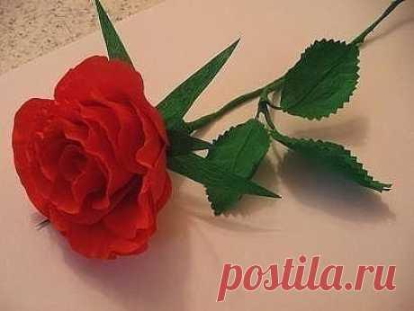 Делаем реалистичные розы из бумаги