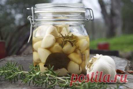Маринованный чеснок – 2 проверенных рецепта | ЖЕНСКИЙ САЙТ