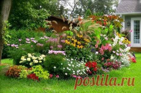 The perennials blossoming all summer