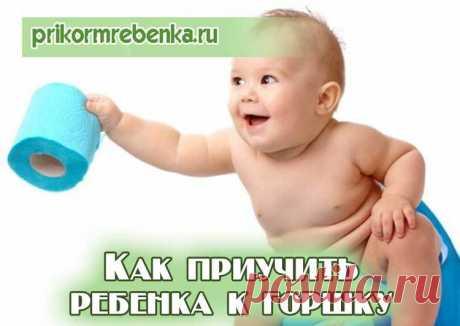 Как научить малыша ходить по своим «делам» на горшок: рекомендации для родителей и методы приучения