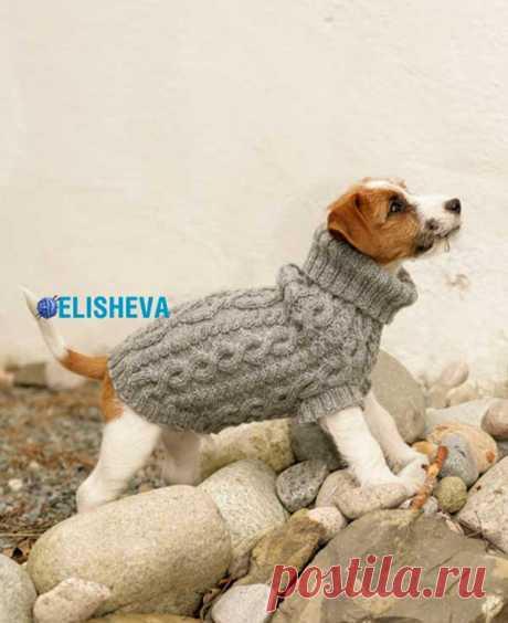 Пальто для собаки с рельефным фантазийным узором от Drops Design, вязаное спицами