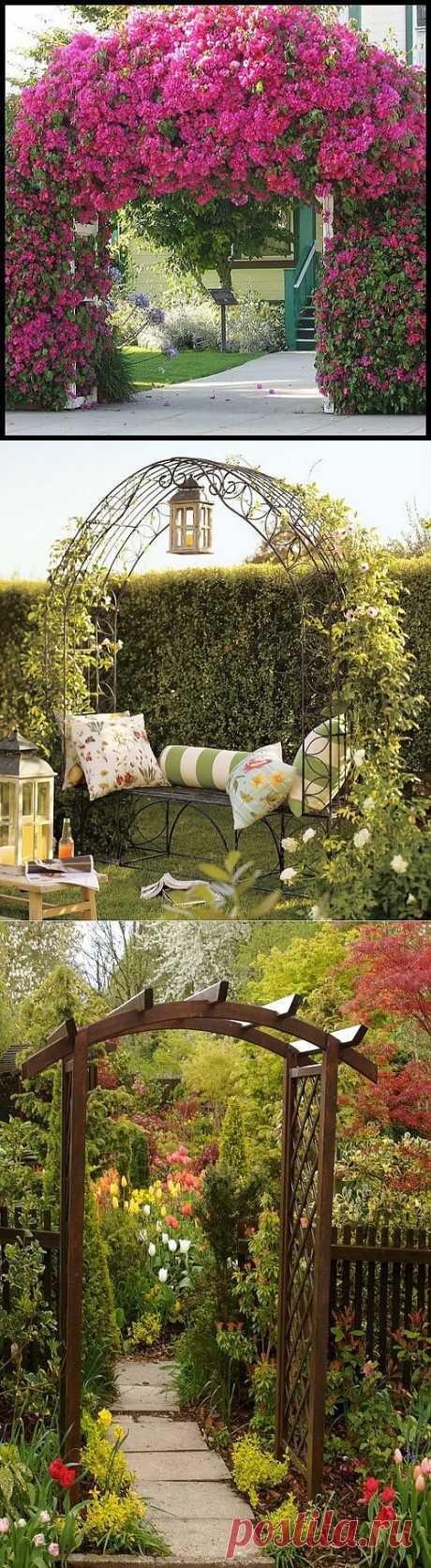 Садовая арка. Выбор конструкции и растений для садовой арки.