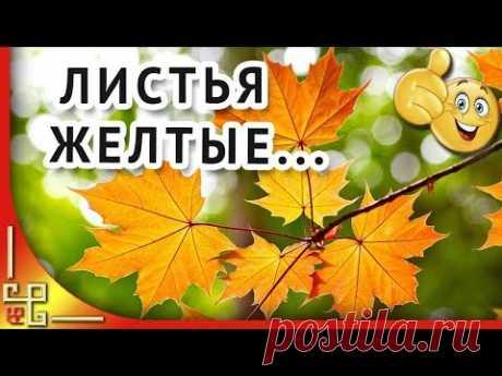 Листья желтые над городом кружатся. Музыка СССР