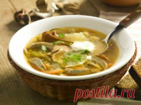 Солянка бывает разной: 4 рецепта вкусных грибных солянок