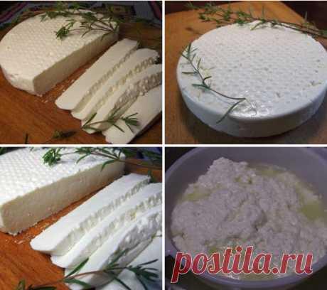 Адыгейский сыр в домашних условиях Адыгейский сыр в домашних условиях Позавчера купила в молочке кусочек сыра и была просто в ужасе от его качества. Даже тот производитель, которому я доверяла
