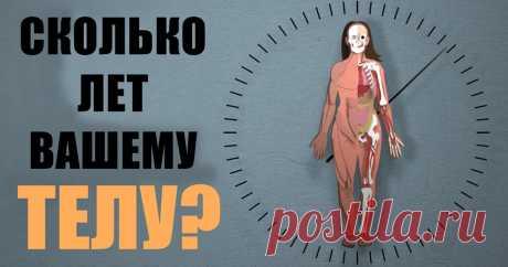 Сколько вам лет на самом деле? Оцениваем груз прожитых лет | JokeHit.ru - Всё обо всём!