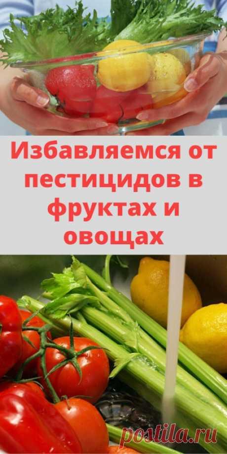 Избавляемся от пестицидов в фруктах и овощах - My izumrud