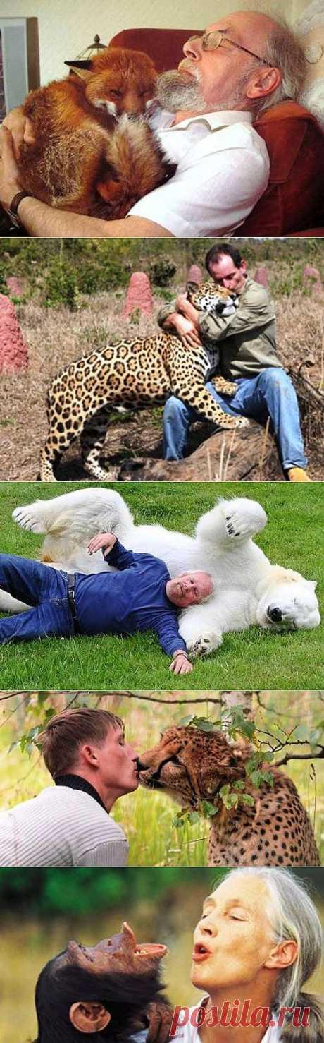 Невероятная дружба человека с диким животным / Питомцы