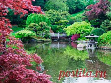 10 самых необычных и красивых садов мира | Путешествия и туризм | Яндекс Дзен