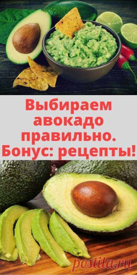 Выбираем авокадо правильно. Бонус: рецепты! - My izumrud
