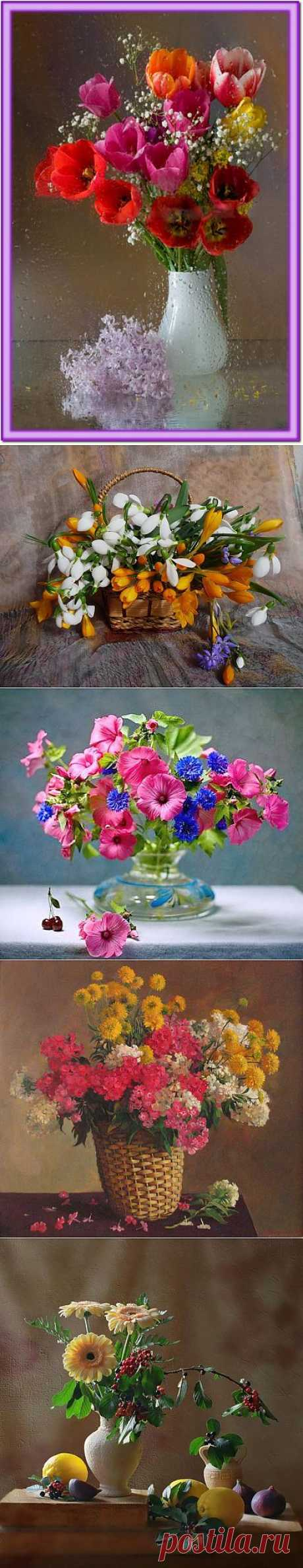Натюрморты Яркие цветы.
