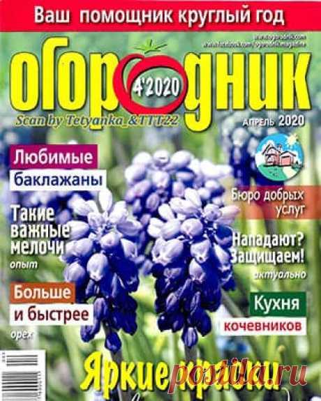 Огородник #4 (2020) » Скачать и читать журнал онлайн