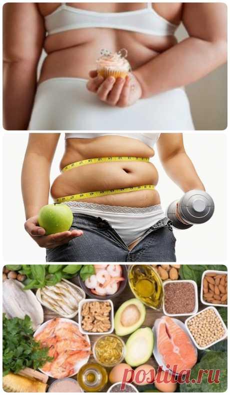 Как остановить отложение жира в организме: 5 секретов - My izumrud
