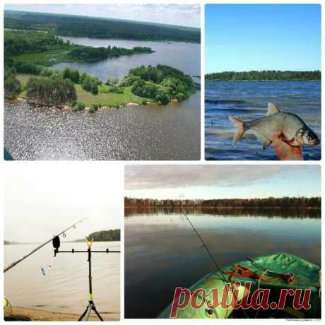 ТОП-лучшие места Подмосковья для отдыха с рыбалкой