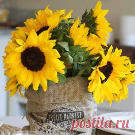 Bouquet with sunflowers: 75 photos of ideas for summer floristics in style Provence