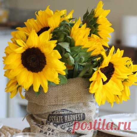 Букет с подсолнухами: 75 фото идей для летней флористики в стиле Прованс