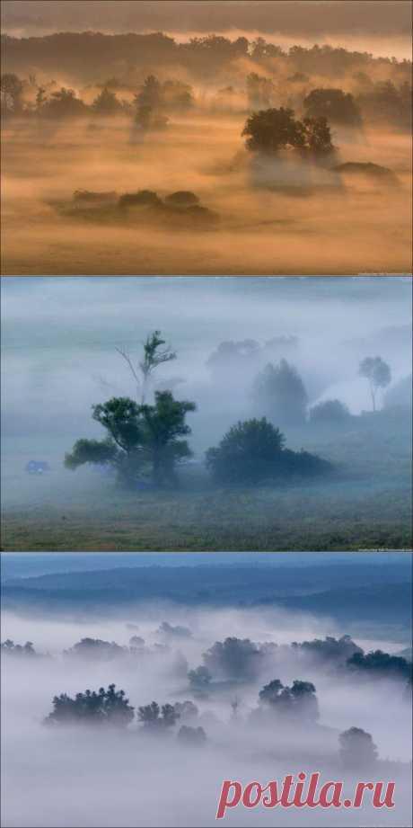 (+1) тема - Королевство туманов | ЛЮБИМЫЕ ФОТО