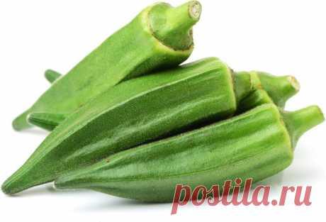 Okra bereiden: tips en recepten – GroenteGroente.nl Okra is een gezonde en zeer smakelijke exotische groente. Hoe moet je okra bereiden, en wat zijn de lekkerste recepten met okra?
