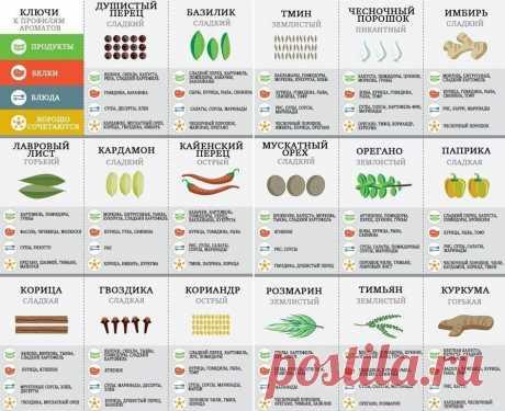 «Руководство по использованию пряностей 🌶» — карточка пользователя Максим в Яндекс.Коллекциях