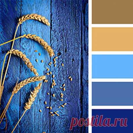 Голубой цвет в интерьере - все про его сочетаемость с другими цветами. Полезные готовые палитры голубого для идеального ремонта в вашем доме на сайте Стоун Флор Кострома   #голубойвинтерьере#счемсочетатьголубой#голубойпалитра#голубойсочетания#голубойцветвинтерьере