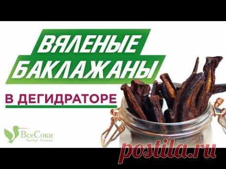 Рецепт приготовления вяленых баклажанов в дегидраторе Tribest Sedona Combo
