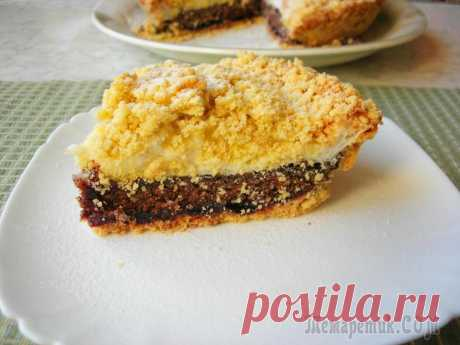 Простой пирог со смородиной и какао