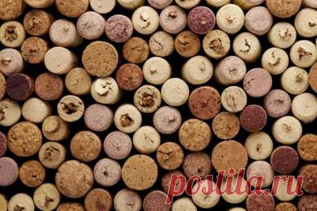 Поделки из винных пробок своими руками, 40 фото. Красивые интерьеры и дизайн