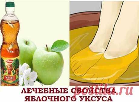 ЛЕЧЕБНЫЕ СВОЙСТВА ЯБЛОЧНОГО УКСУСА    Являясь натуральным продуктом, яблочный уксус в народной медицине используются давно, а в последние годы еще с большим размахом. Регулярное потребление этого целебного средства поможет вам избавить…
